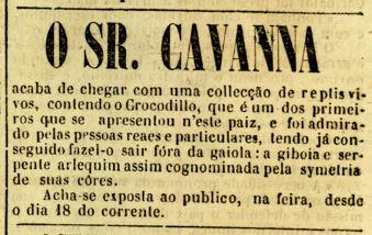 O Viriato 19-09-1862